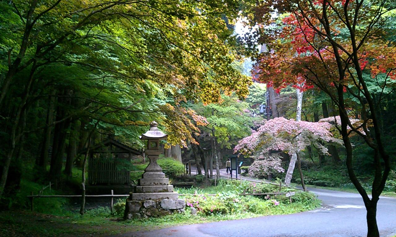 京都 雨の比叡山延暦寺