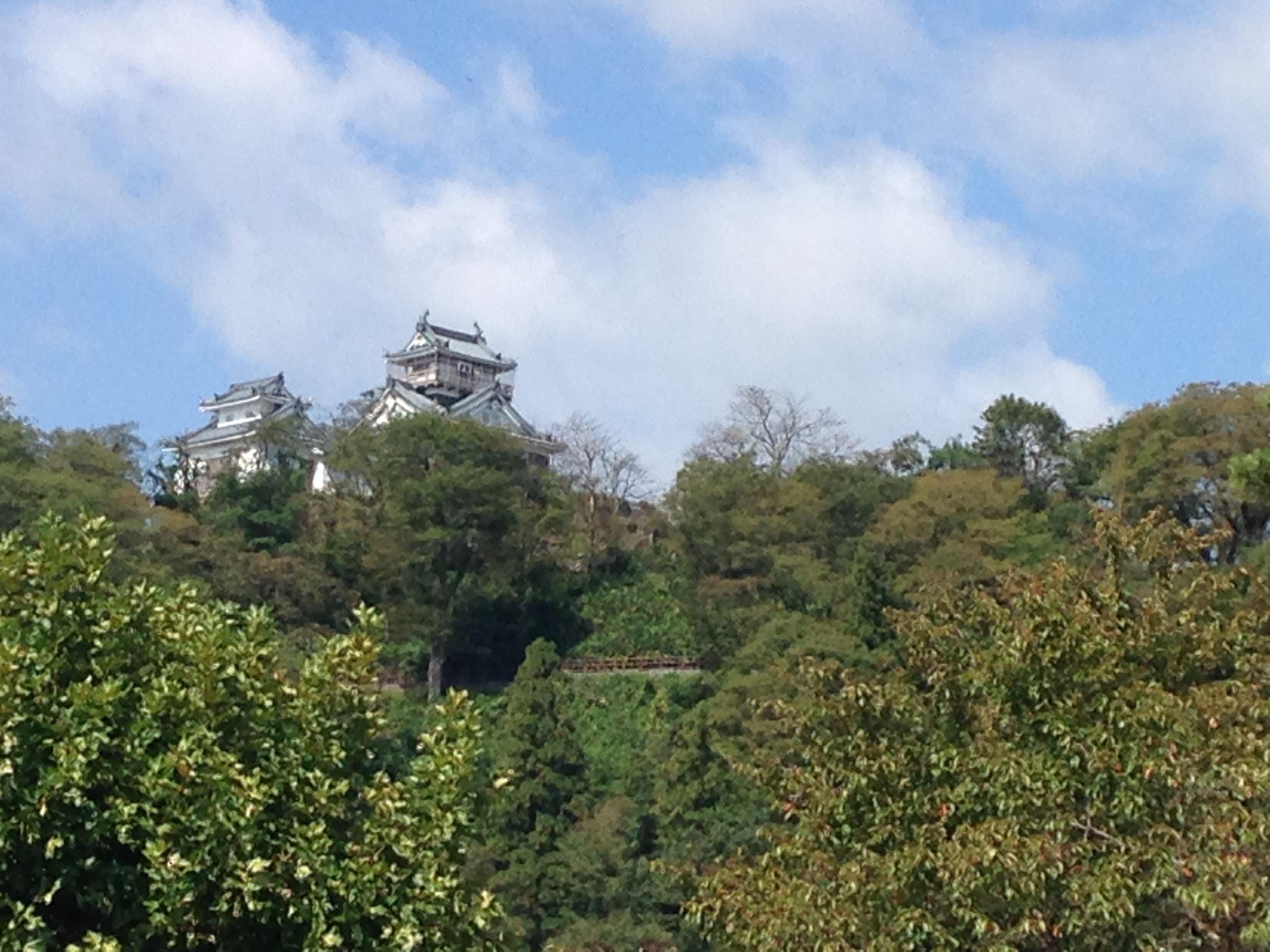 【福井】越前大野城と城下町をぶらぶら!お蕎麦や郷土料理を楽しみました