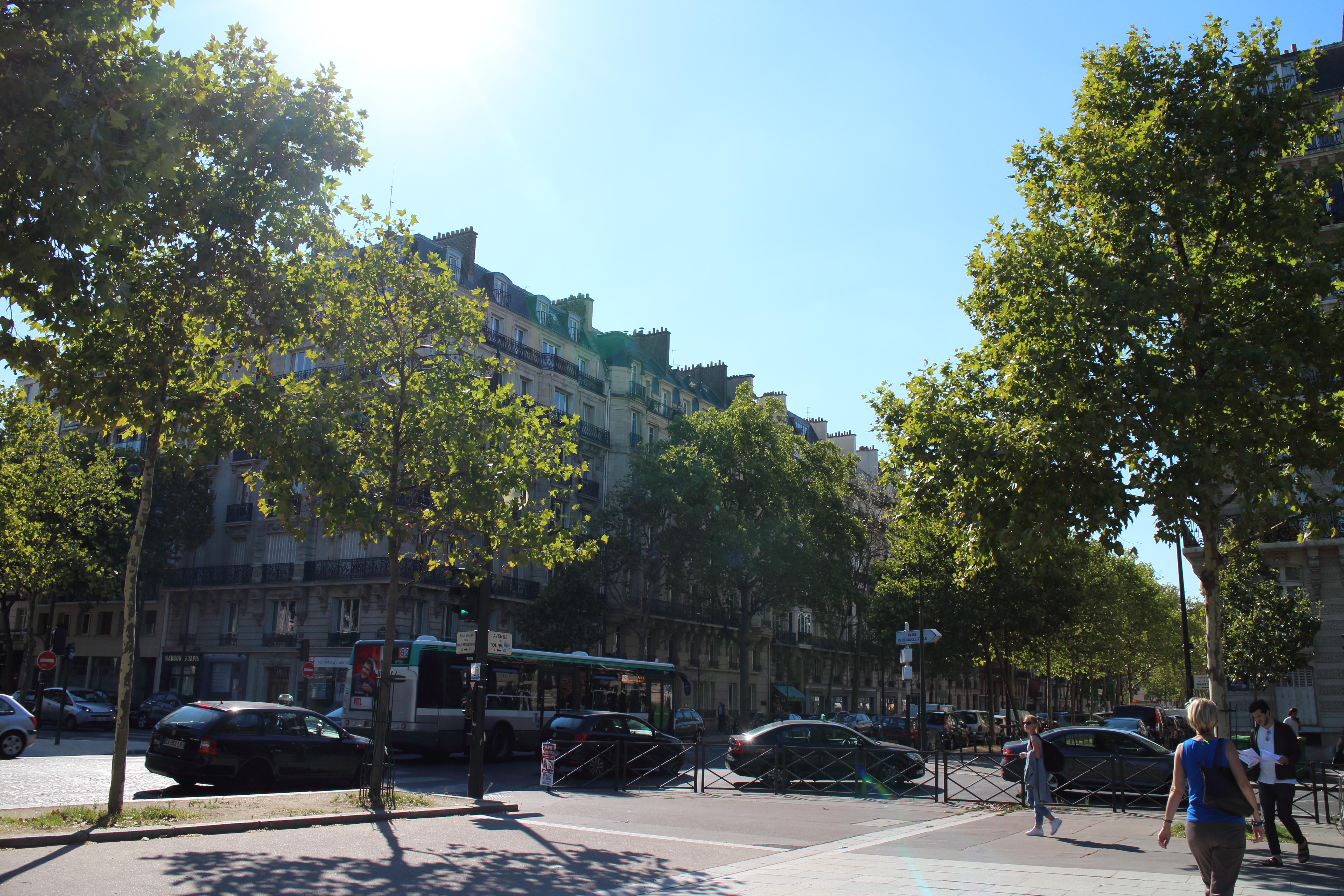 パリで猫を探す本。『猫をさがして-パリ20区芸術散歩』