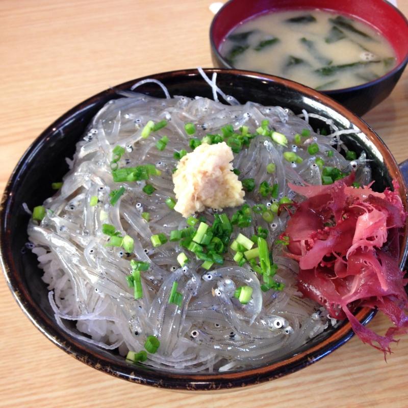 東京から日帰り☆みさきまぐろきっぷでお得に三浦半島へ!絶景の海とまぐろ料理と生しらす丼