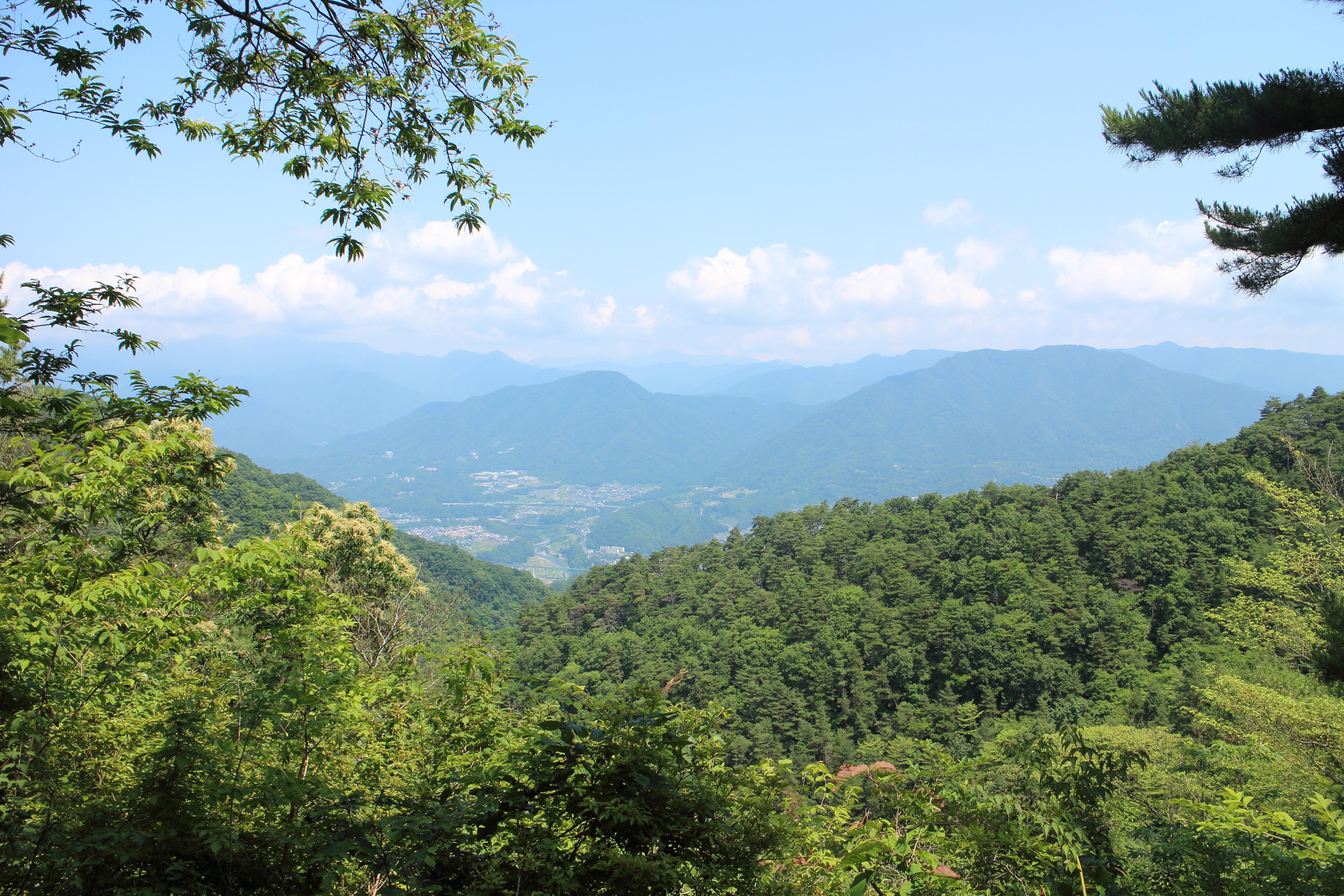【東京・登山】神秘的な苔の森。高畑山&倉岳山はJR中央線でラクラク!